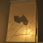 ELAFOS_progetto lampada_2015